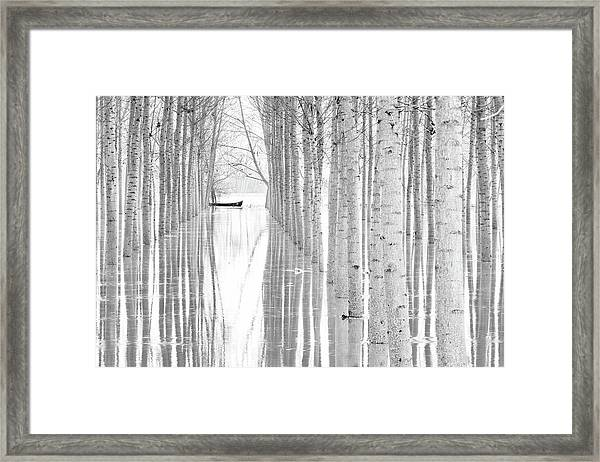 Free Movement Framed Print by Aglioni Simone