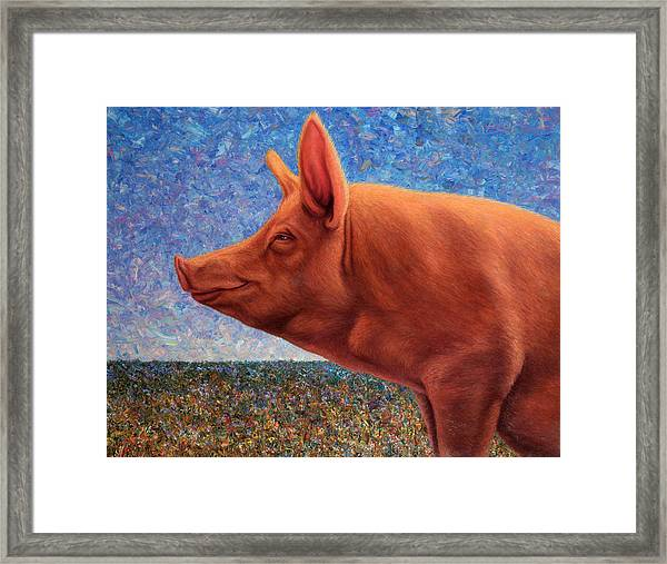Framed Print featuring the painting Free Range Pig by James W Johnson