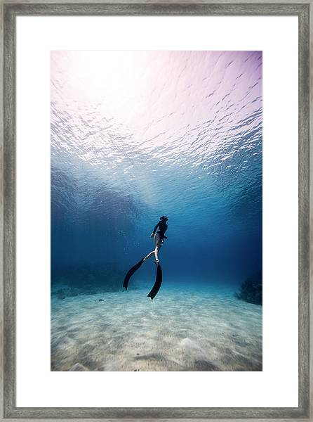 Freediver Framed Print by One ocean One breath