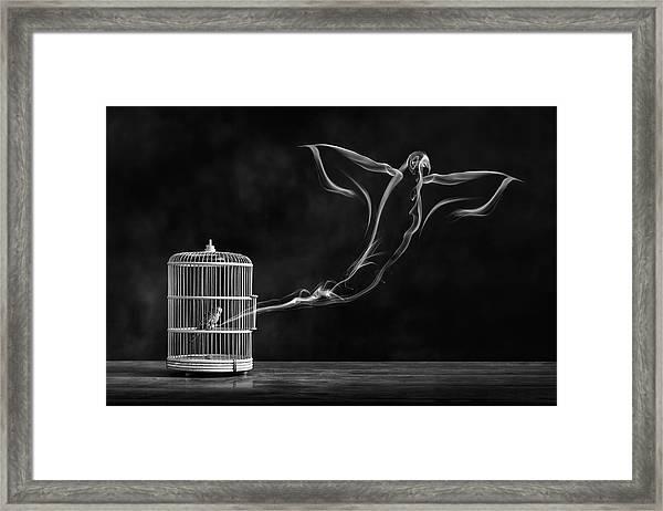 Freedom Bird Framed Print