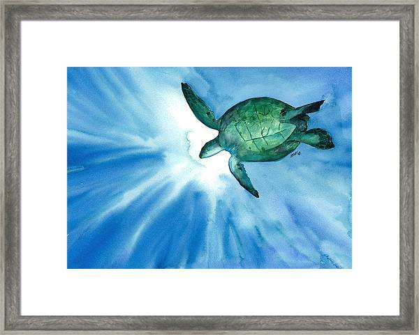 Sea Tutrle 2 Framed Print