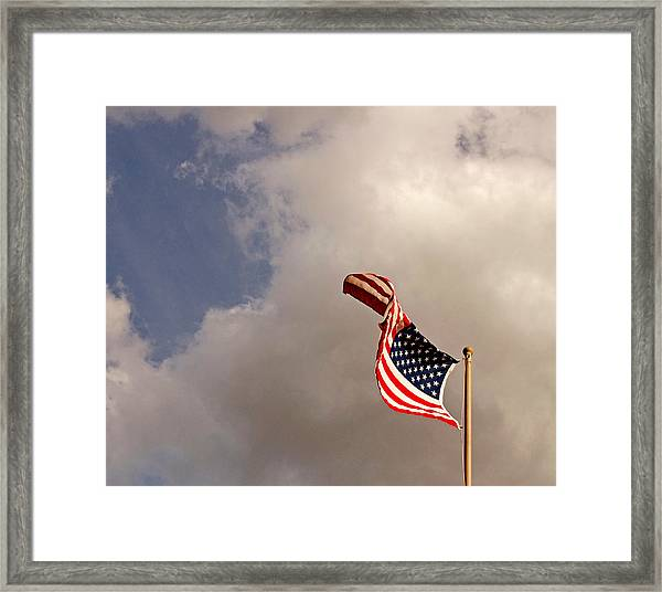 Freedom Moves Itself 2013 Framed Print