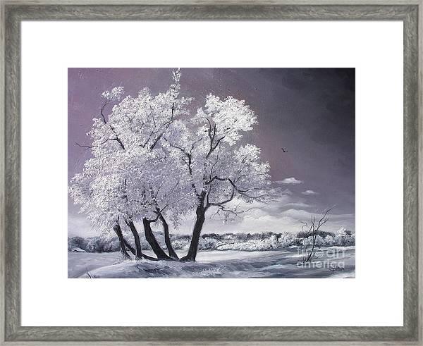 Freeze Framed Print