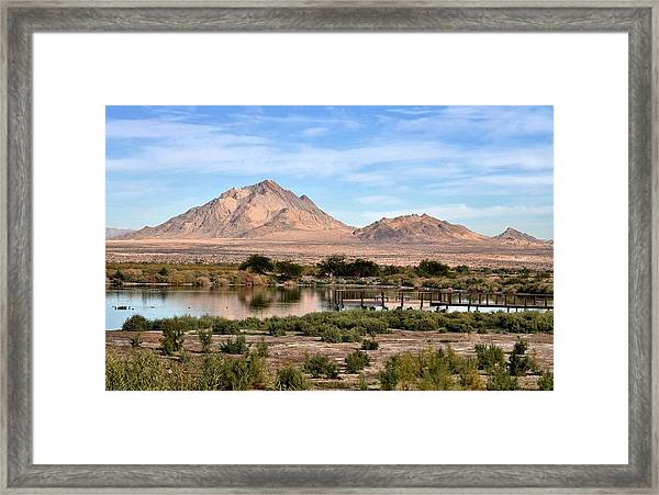 Frenchman Mountain And Oasis Framed Print by Janelle Losoff