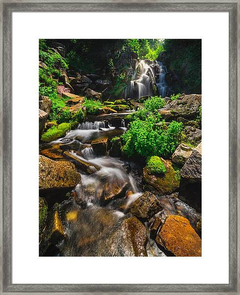Fresh And Free Flowing Framed Print