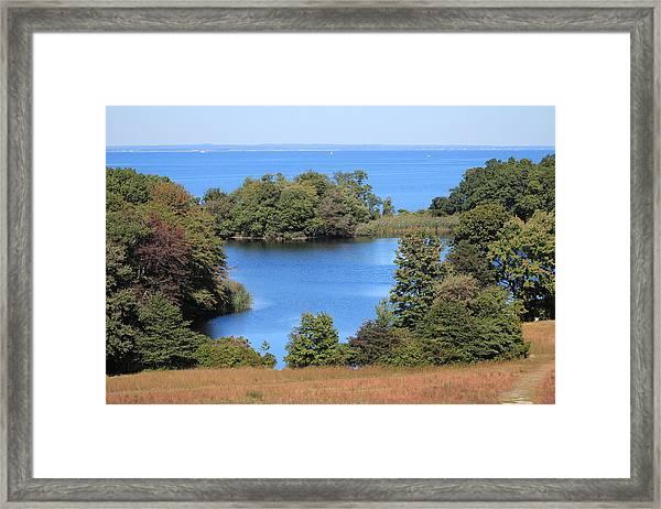 Fresh Pond At Caumsett Framed Print