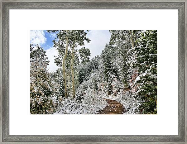 Fresh Snow Framed Print by Gene Praag