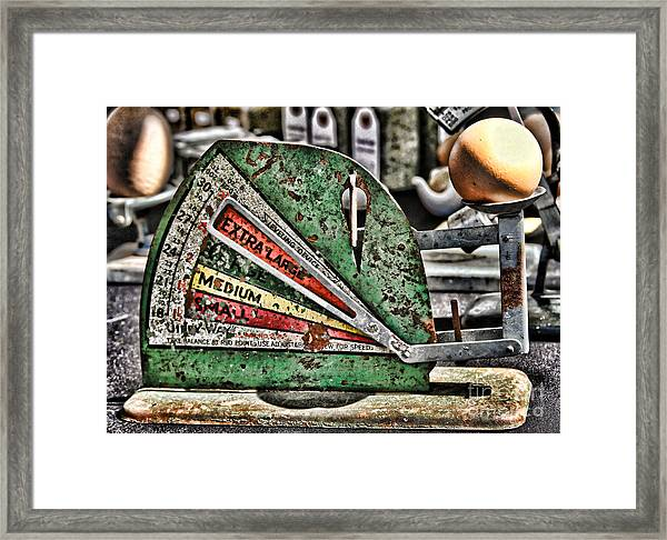 Freshly Weighed Egg By Diana Sainz Framed Print