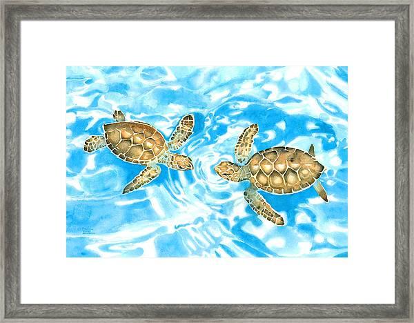 Friends Baby Sea Turtles Framed Print