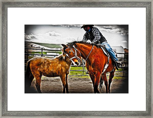 Friends Framed Print by Denise Teague