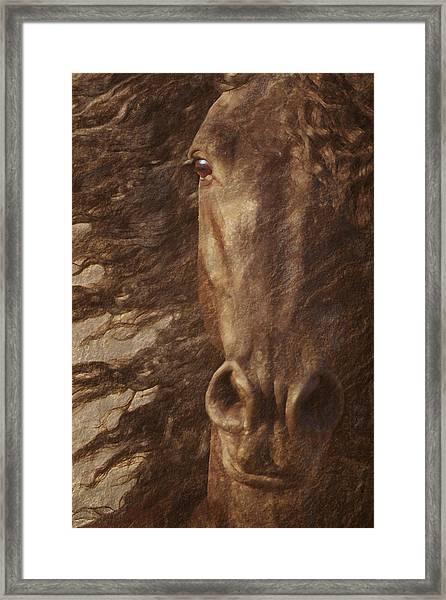 Framed Print featuring the photograph Friesian Spirit by Melinda Hughes-Berland