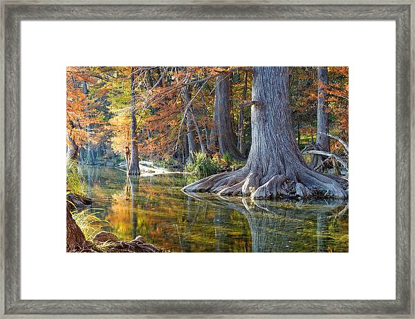 Frio River Morning Framed Print