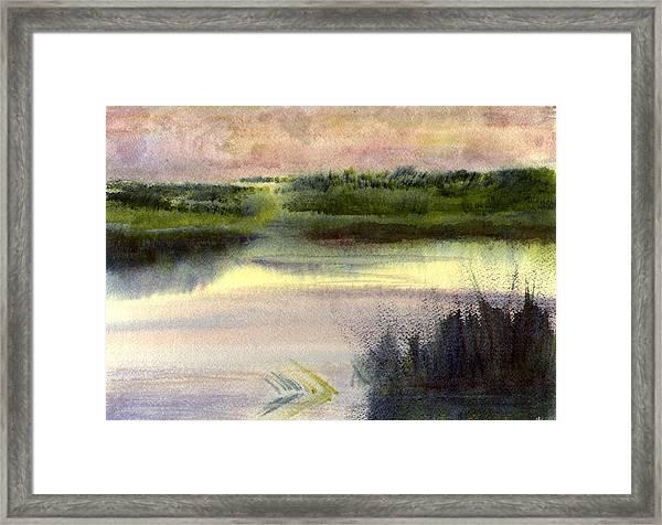 Fripp Marsh Framed Print
