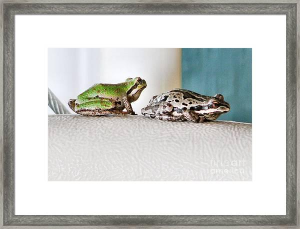 Frog Flatulence - A Case Study Framed Print