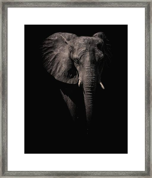 From The Darkness Framed Print