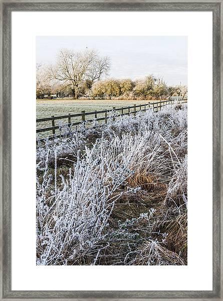 Frosty Landscape Framed Print