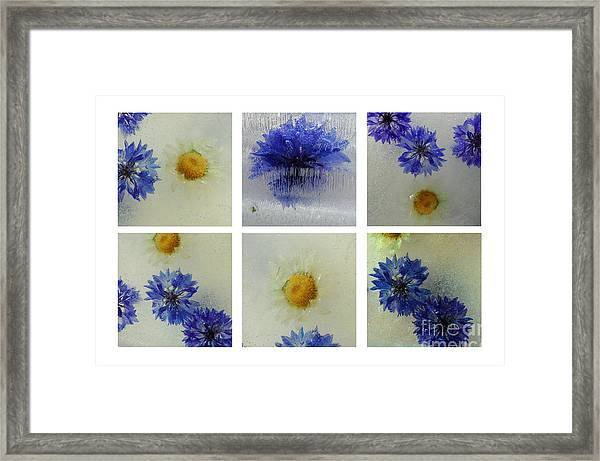 Frozen Blue Framed Print