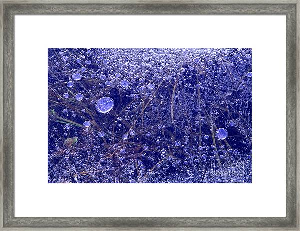 Frozen Bubbles In The Merced River Yosemite Natioinal Park Framed Print