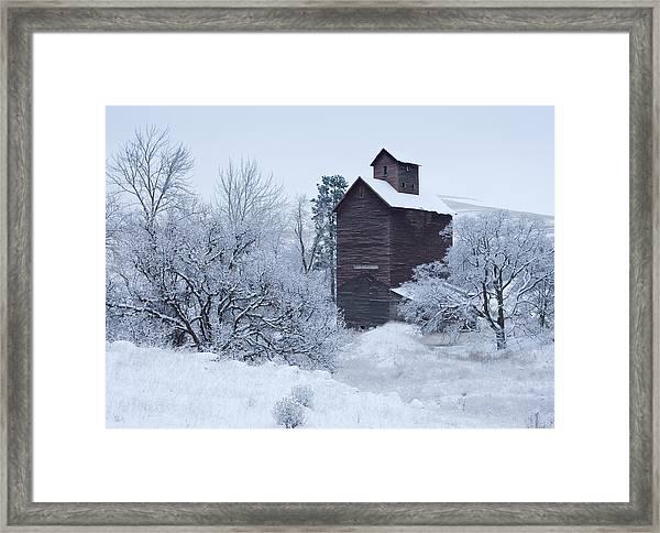 Frozen In Time Framed Print