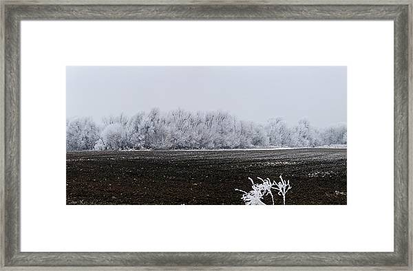 Frozen Possibilities Framed Print