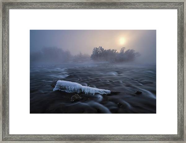 Frozen Framed Print by Tom Meier