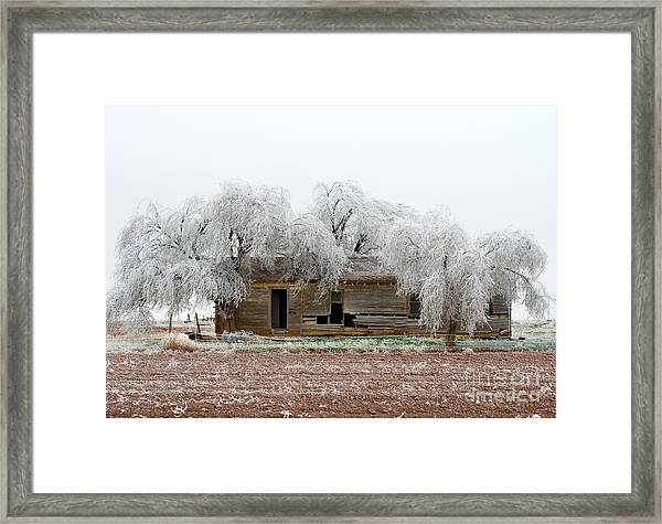 Frozen Trees And Shack Framed Print by Mae Wertz