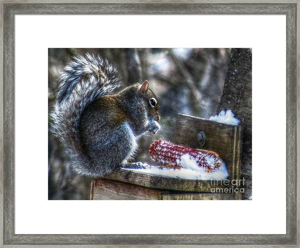 Frozen Veggies Framed Print by Missy Richards