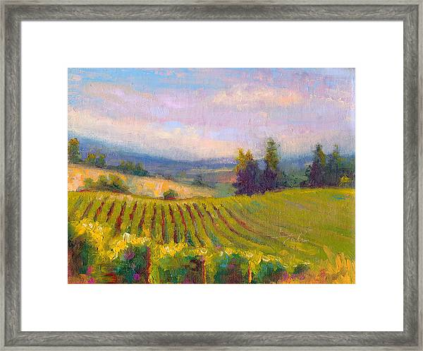 Fruit Of The Vine - Sokol Blosser Winery Framed Print