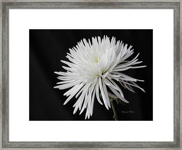 Fuji Mum Framed Print