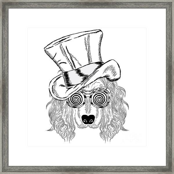 Funny Dog In An Unusual Hat And Framed Print
