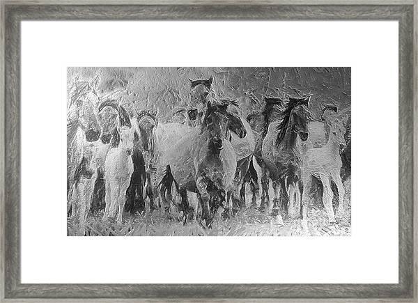 Galloping Horse Team Framed Print
