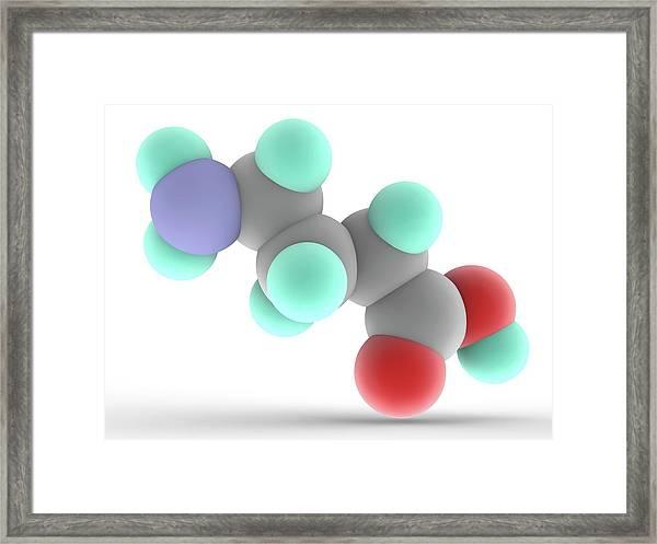 Gamma-aminobutyric Acid Gaba Molecule Framed Print
