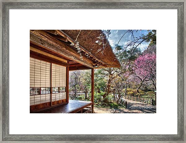 Garden Blooming Plum Framed Print by Tad Kanazaki
