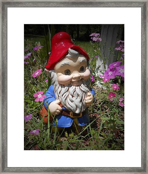 Garden Gnome Framed Print