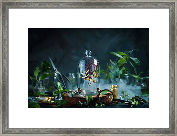 Garden Golden. Part 5 Framed Print