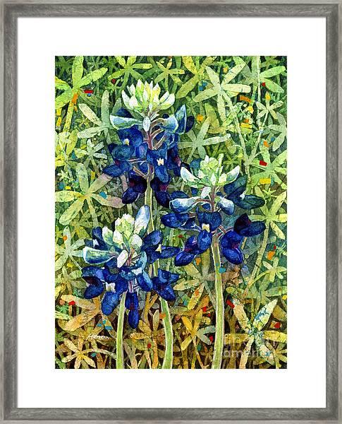 Garden Jewels I Framed Print