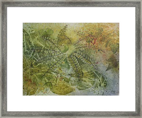 Garden Mist Framed Print by Patsy Sharpe