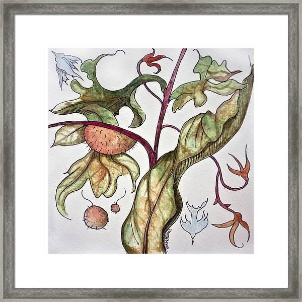 Garden Of Adam Framed Print