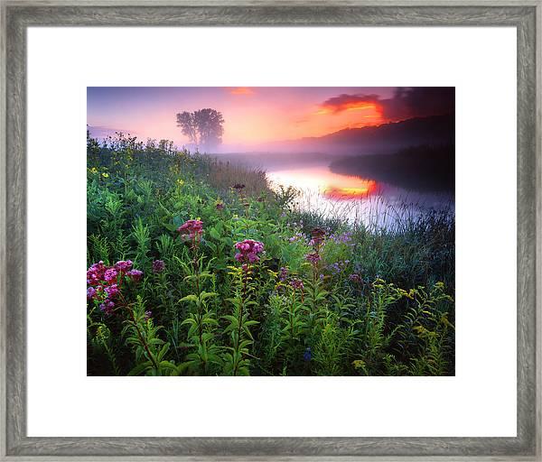 Garden On The Creek Framed Print