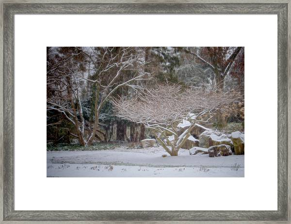 Framed Print featuring the photograph Garden Scene During Winter Snow At Sayen Gardens 2 by Beth Sawickie