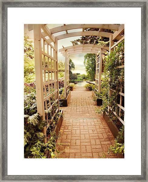 Garden Trellis View Framed Print