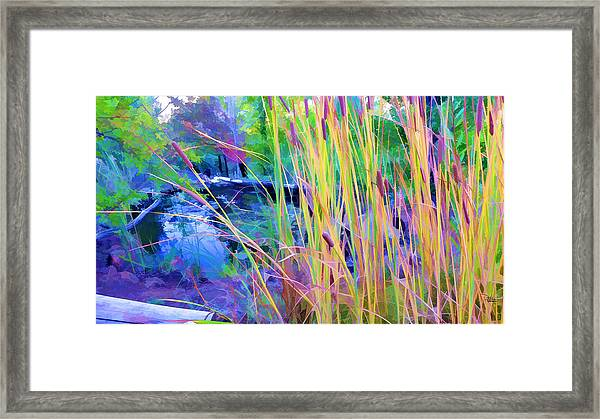 Garden With Koi Pond And Cattails Framed Print
