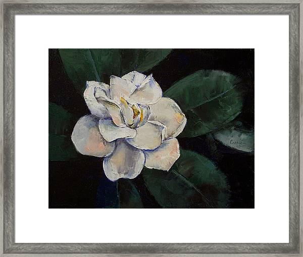 Gardenia Oil Painting Framed Print