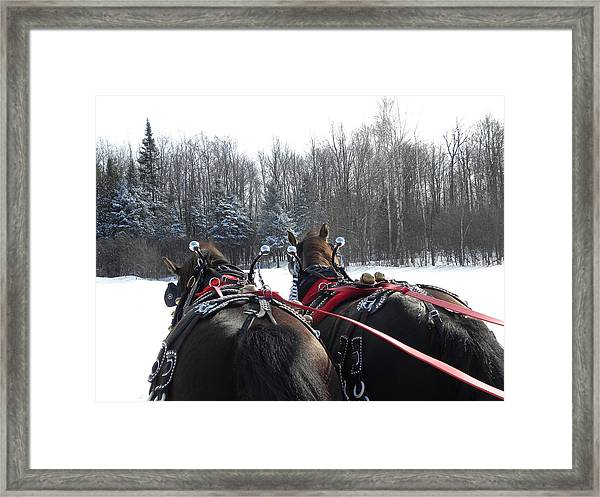 Gee And Haw Framed Print