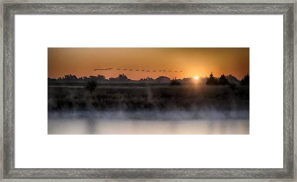 Geese At Sunrise Framed Print by Garett Gabriel