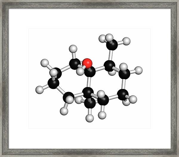 Geosmin Earthy Flavour Molecule Framed Print by Molekuul/science Photo Library