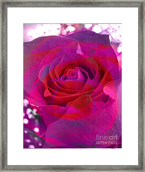 Gift Of The Heart Framed Print