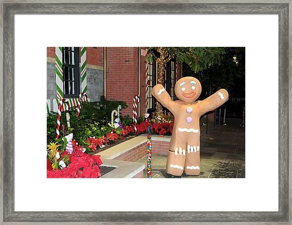 Ginger Bread Man Framed Print
