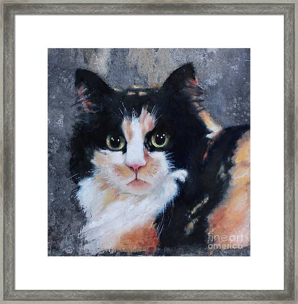 Framed Print featuring the painting Ginger by Wendy Ray