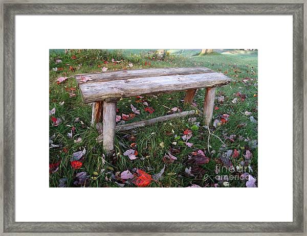 Ginny's Bench Framed Print